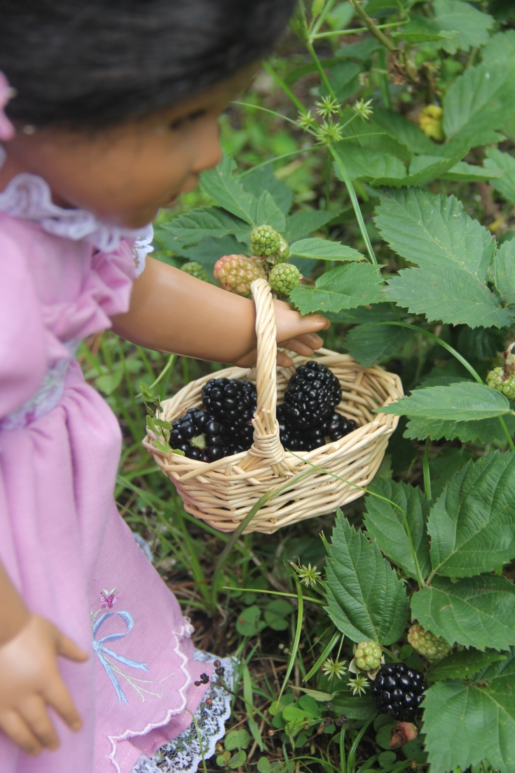 Blackberry picking adventure for Josephina a American Girl Doll