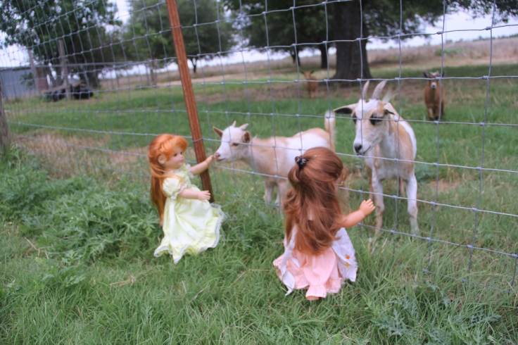 The Dolls Visit the Farm! Bonnie and her friends see the goats and cows....while Josefina and Felicity meet the dogs and bunnies