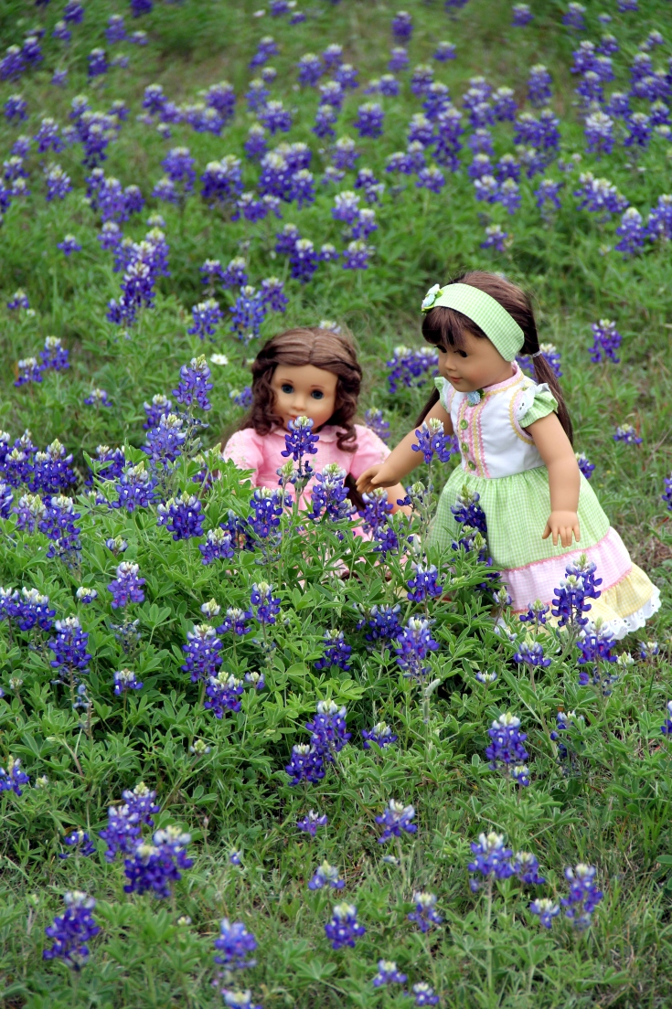 Texas Blue bonnets in the Spring!